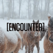 Telluride-in-a-word-Encounter